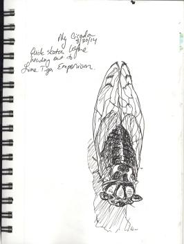 Day10_Bug