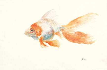 """Orange Creamsicle"", an 18x12"" watercolor on paper. $55 each. Free non-expedited shipping!"
