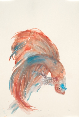 """""""Red Betta"""", watercolor on 18x12"""" paper. $45, non-expedited domestic shipping included. PM me if interested. *Fun fact: This piece is appearing in some Kohls stores. You could own the original!*"""