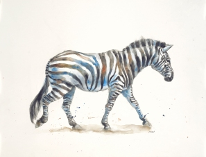 """Chill Zebra"" - watercolor & graphite on 18x24"" paper. $75, non-expedited domestic shipping included."