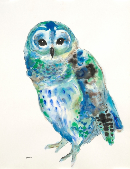 """Blue Owl"" - watercolor, graphite, pen & ink on 18x24"" paper. $75, non-expedited domestic shipping included."