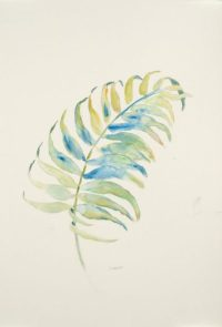 """Soft Frond"", 12x18"" watercolor on paper, $40, non-expedited domestic shipping included"