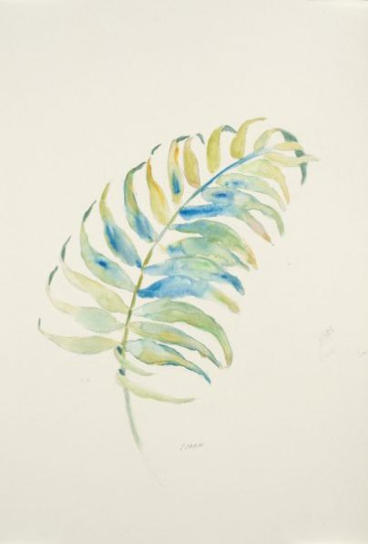 """""""Soft Frond"""", 12x18"""" watercolor on paper, $40, non-expedited domestic shipping included"""