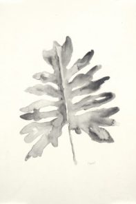 """""""B&W Palm I"""", 12x18"""" watercolor on paper, $40 for one or $60 for B&W Palm I & II, non-expedited domestic shipping included"""