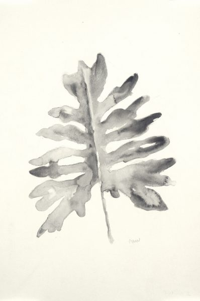 """B&W Palm I"", 12x18"" watercolor on paper, $40 for one or $60 for B&W Palm I & II, non-expedited domestic shipping included"